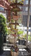 Le jardin du P.P.M