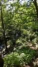 Le sentier de Bridal Veil Falls